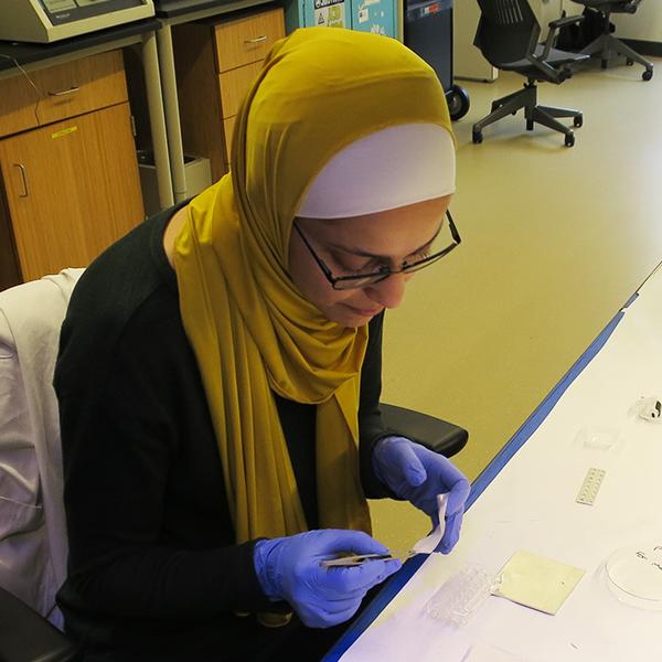 Ghada Sharif at work in the lab