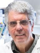 Dr Olivier Delattre